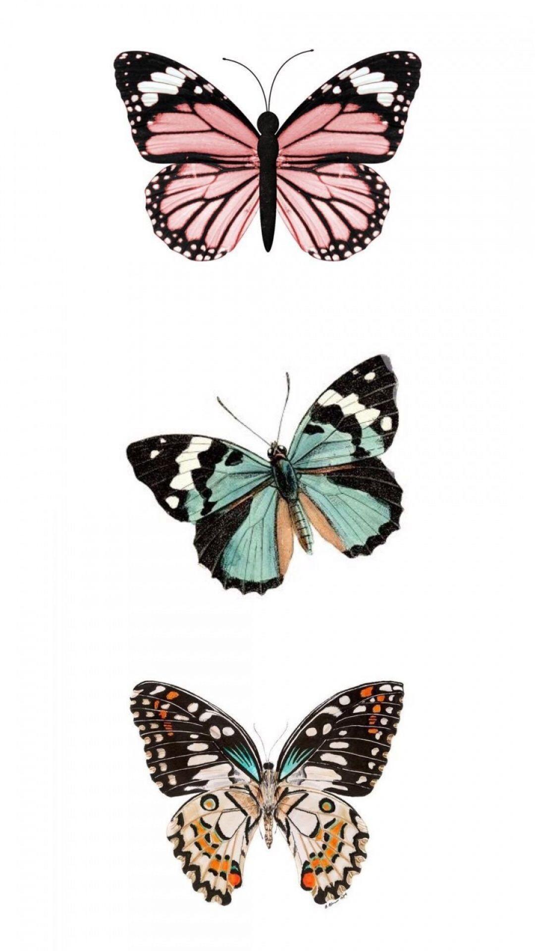 Aesthetic butterfly wallpaper mobile flip wallpapers