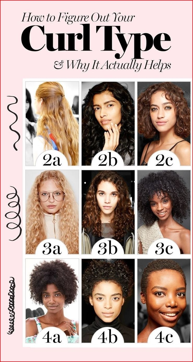 Classification Of Medium Hair Types Curly Hair Styles Types Of