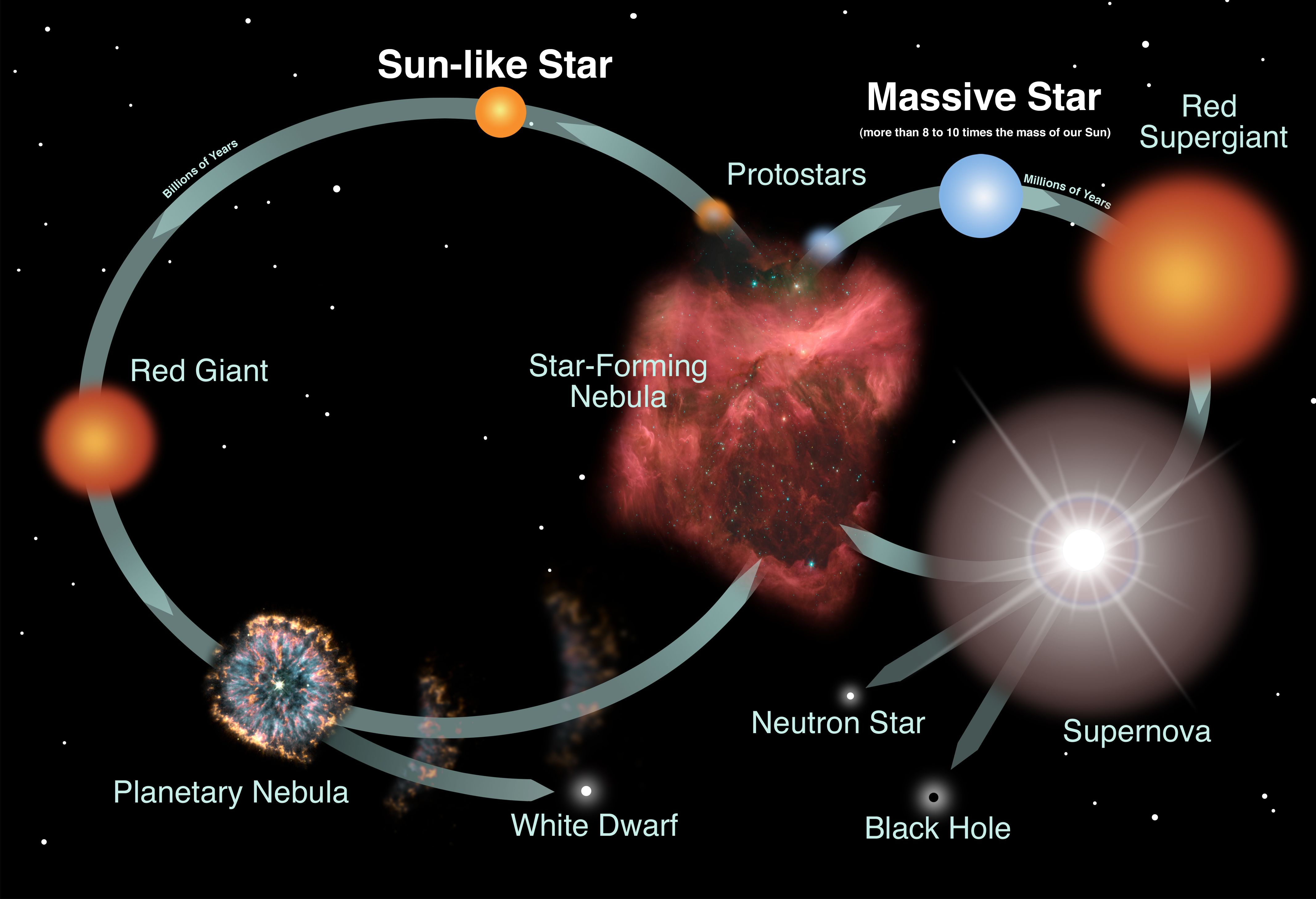 Diagram of the lifecycles of stars nebula