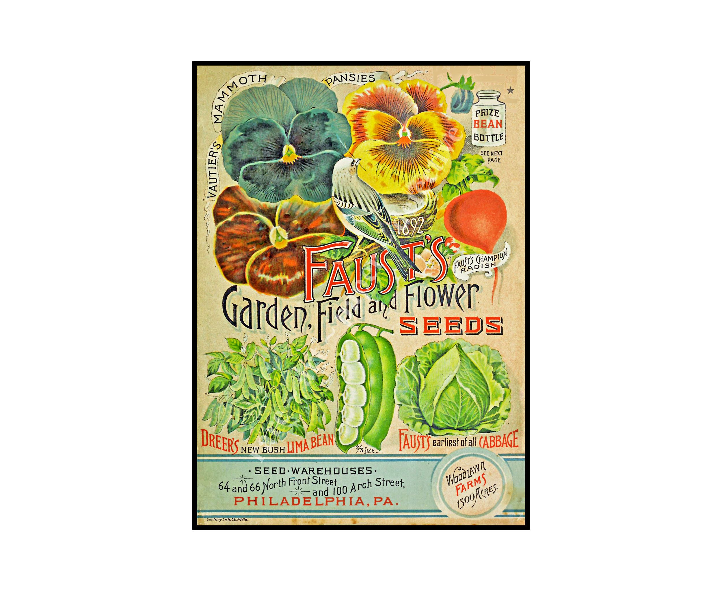 Pin on Garden & Farm Decor Prints, Seed Pack & Catalog Art