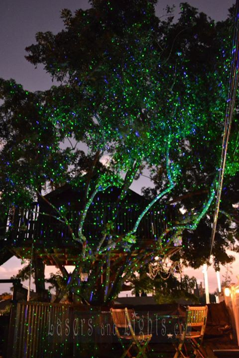 Outdoor Firefly Laser Light Projector Photo Gallery