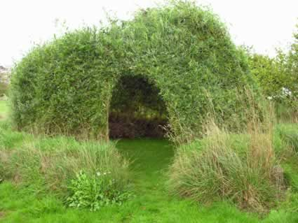 living willow sculptures   Living Structures