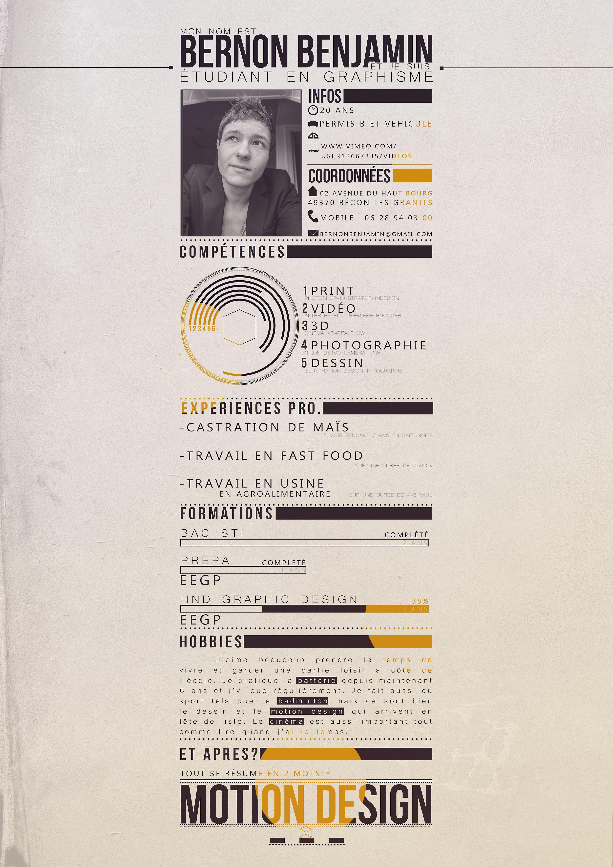 Cv Graphic Design Avec Images Idee Cv Graphisme Graphic