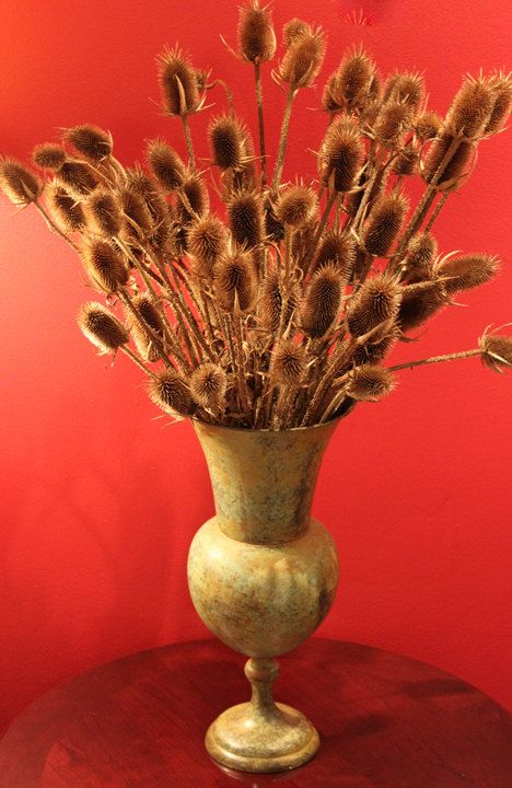 Dried Plants Arrangement In Metal Vase By Anythingdiscovered 74 00