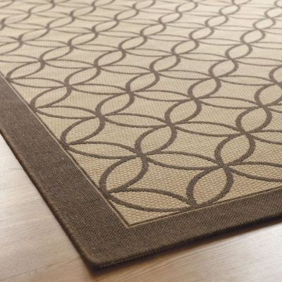 Indoor Outdoor Rug For Dining Room So It Can Be Hosed Off When