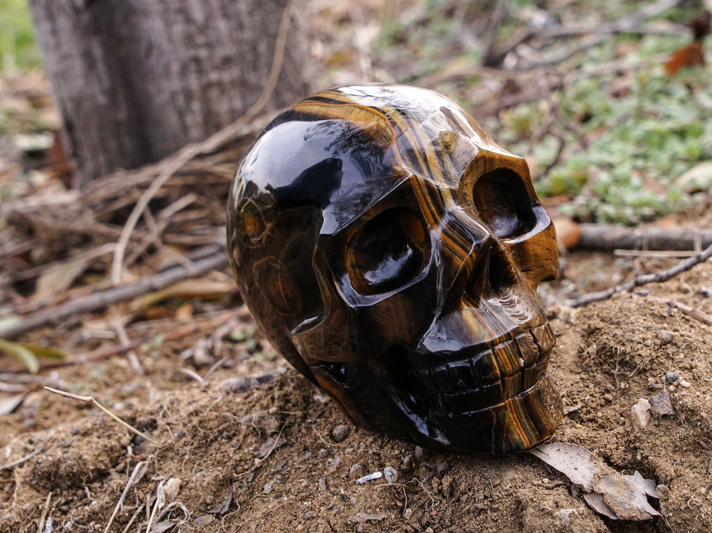Yinglai 4 3 Realistic Skull Tiger Eye Human Skull Crystal Skull Sculpture Crafts Tiger Eye Protection Real Human Skull Crystal Skull Crystal Skulls For Sale