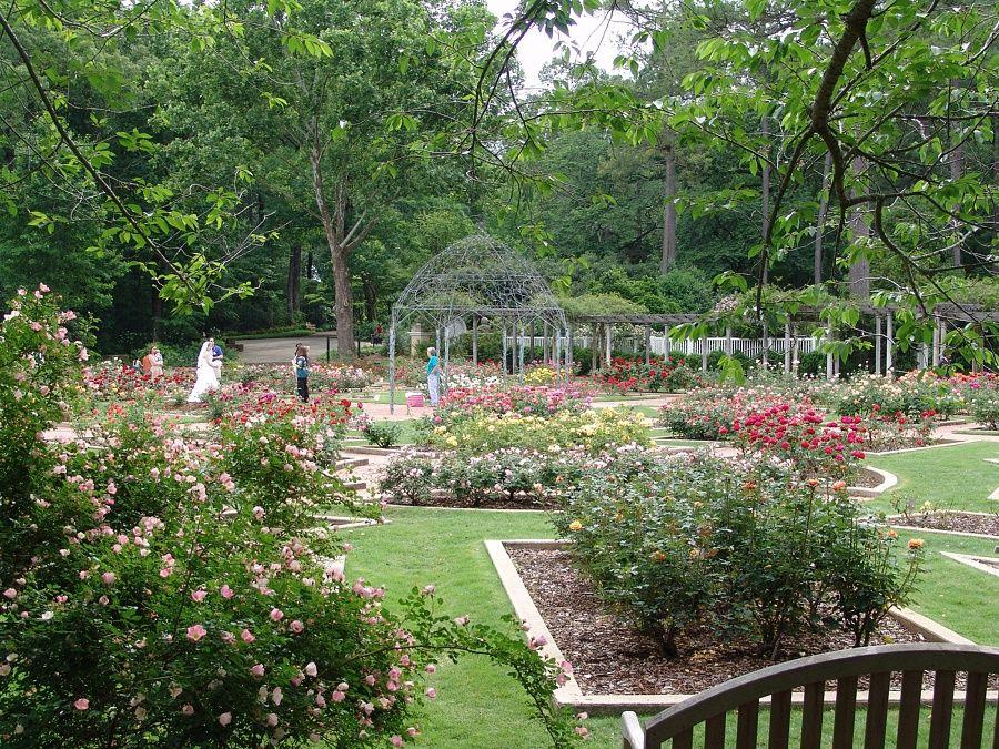 259045f5cbc725f56b53f25033cc0764 - Birmingham Botanical Gardens Spring Plant Sale