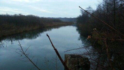Morgengassirunde am Kanal (@ Eggenstein in Eggenstein-Leopoldshafen, Baden-Württemberg) https://t.co/pVk0pQ0XmI