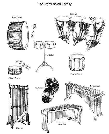 Images Of The Percussion Family Instruments Of The Orchestra