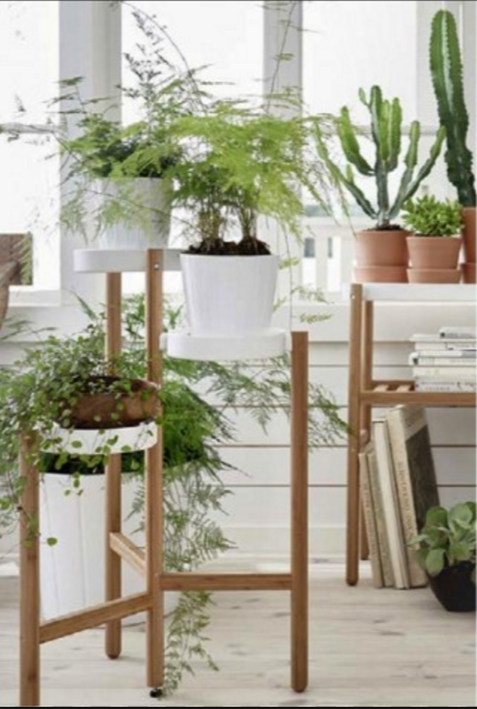 Satsumas Plant Stand Bamboo White In 2019 For The Home Living
