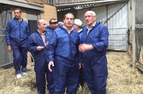 تفقد الدكتور عصام فايد وزير الزراعة واستصلاح الأراضى، عدداً من مزارع الانتاج…