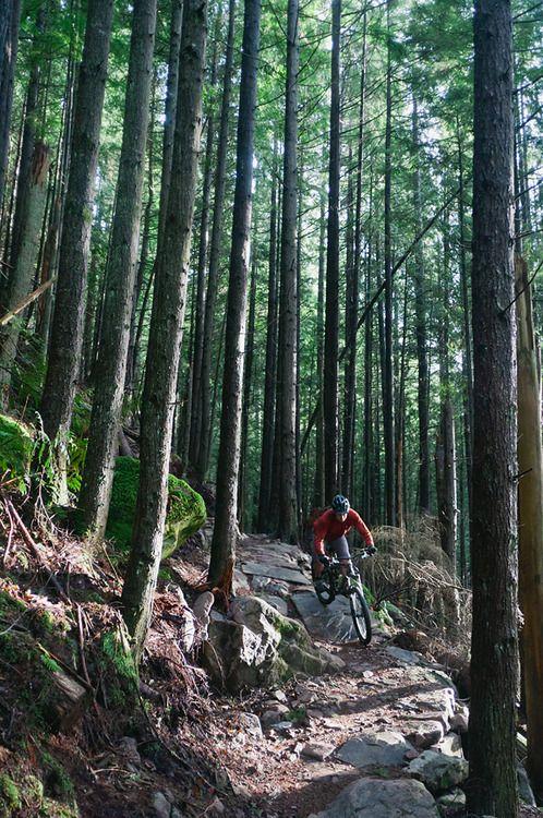 Pin By Frank Vidimos On Mountain Bike Mountain Bike Trips Mountain Bike Trails Mountain Biking
