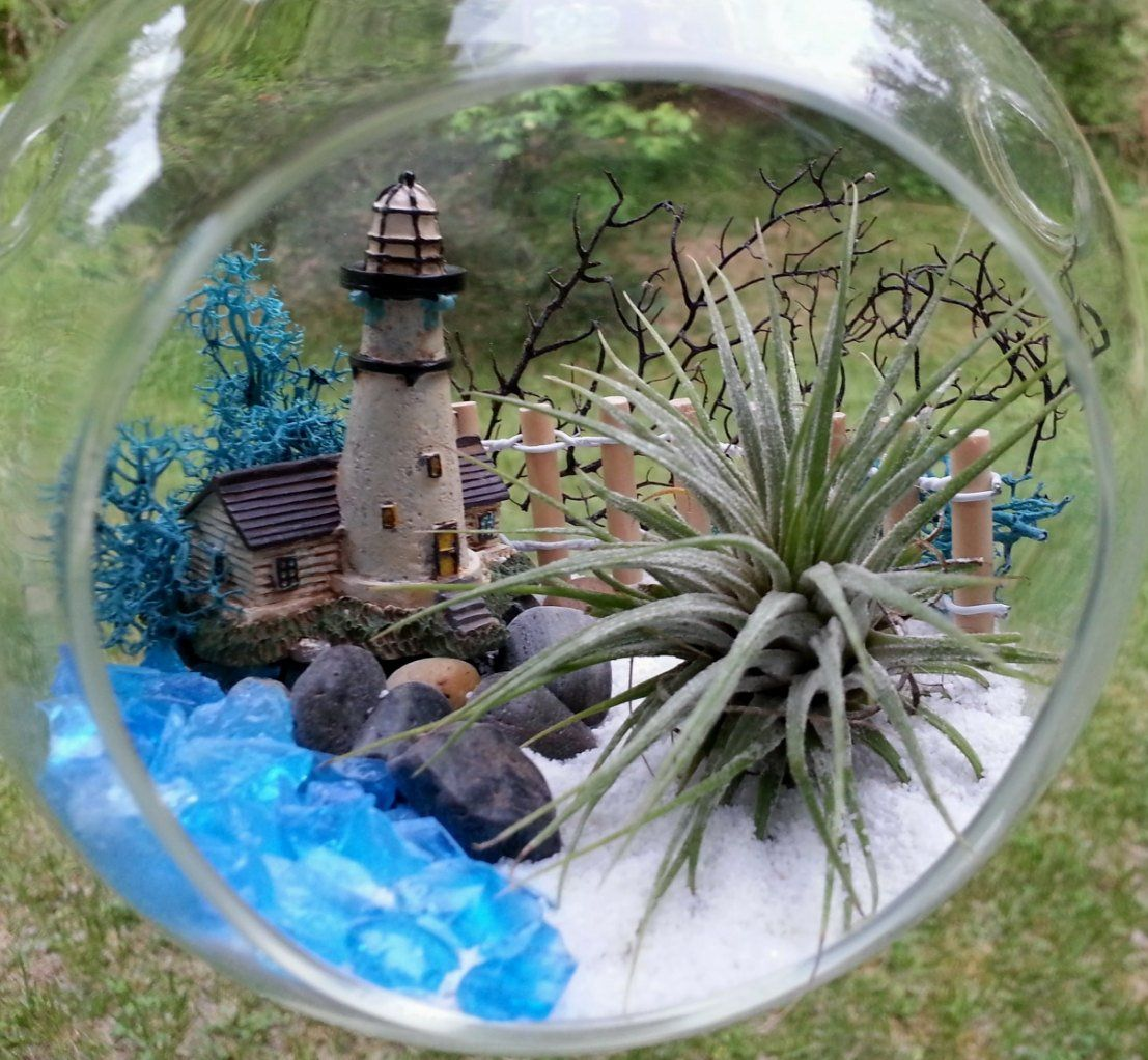 "Large 6.5"" Lighthouse Air Plant Terrarium Kit Hanging"