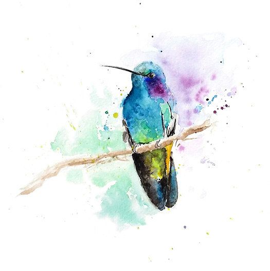 Watercolor Hummingbird Print Watercolor Bird Print Hummingbird
