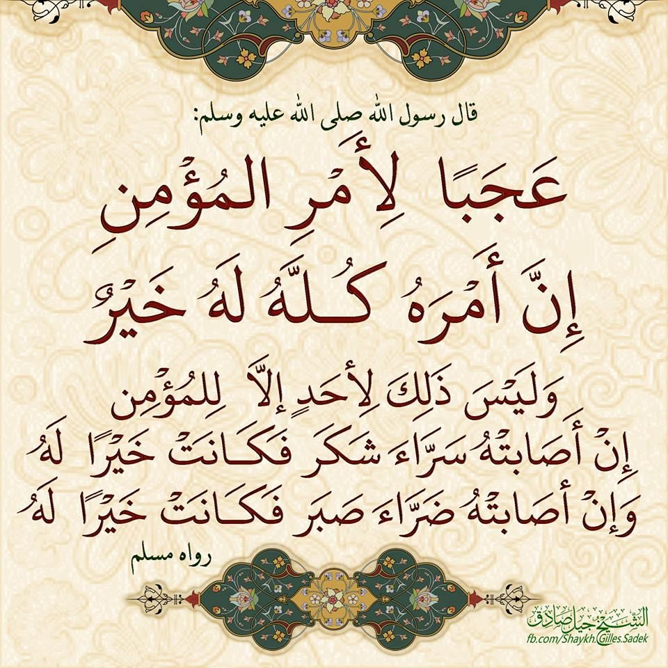 Shaykh Gilles Sadek Quran Tafseer Arabic Quotes Ahadith