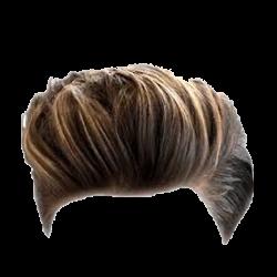 Man Hair Wig Png Mens Image Purepng Free Hair Png Photoshop Hair Mens Hairstyles