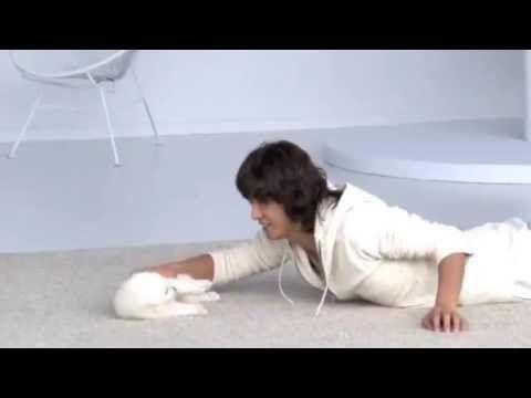 Takuya - Nikon 1 J2「白い子犬たち」篇 - YouTube