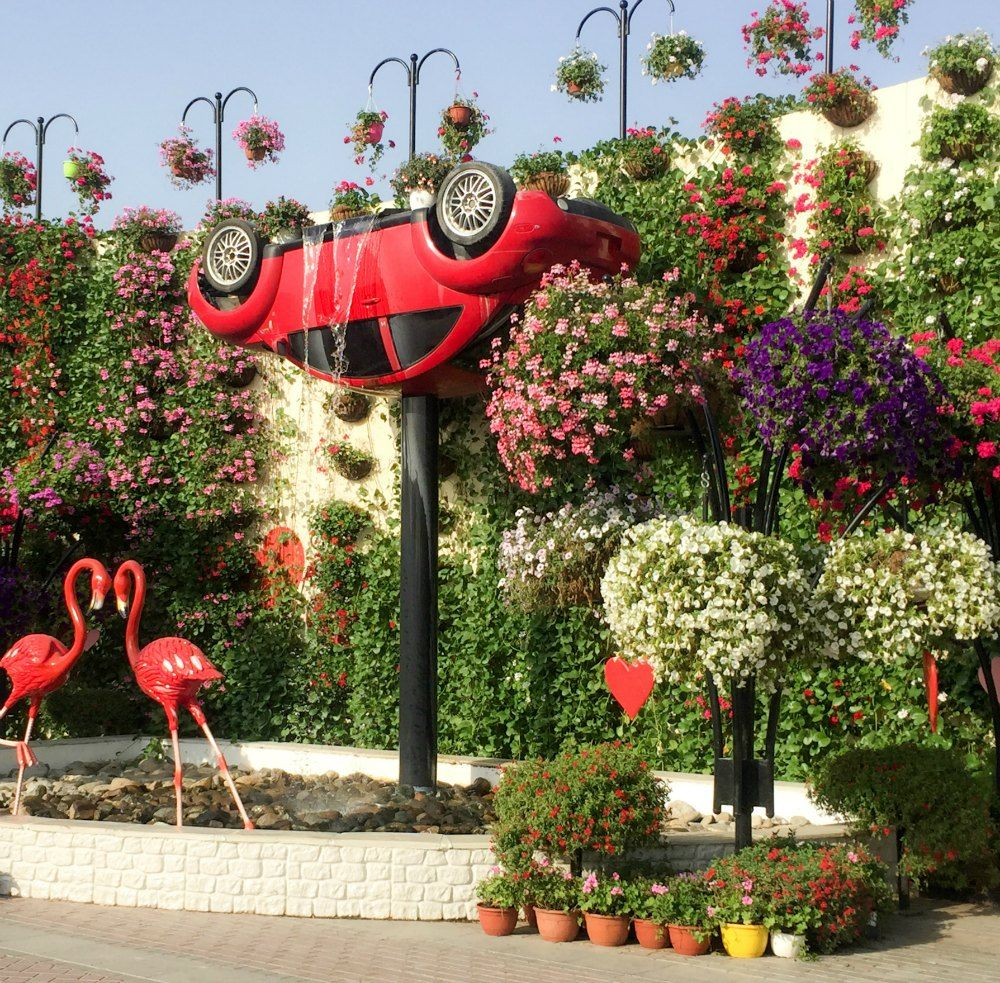 Dubai Miracle Garden Upside Down Car Fountain Bahçe