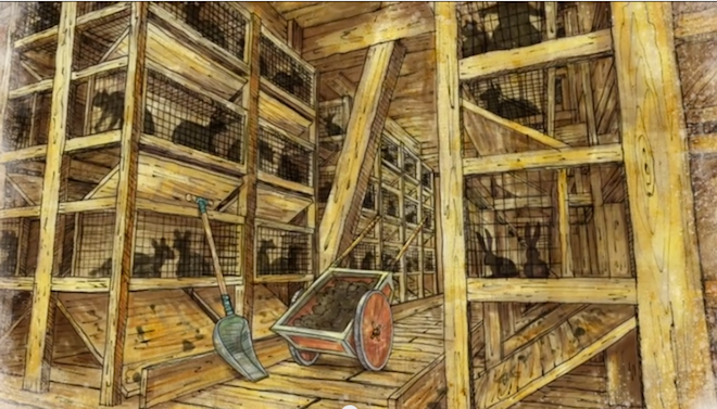 Noah's appalling lack of animal welfare