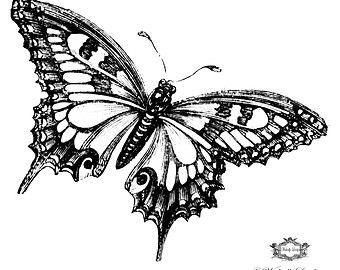d2605eefb Blue Morpho Butterfly, 3d Butterfly tattoo, WickedlyLovely skin art ...