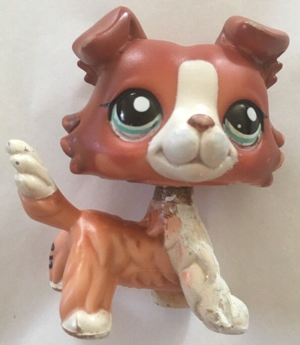 Littlest Pet Shop 1542 Collie Dog Puppy Blue Eyes LPS Brigitte Popular Blemish | eBay