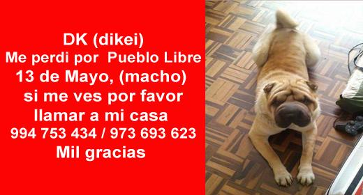 DK (dikei) Me perdi por  Pueblo Libre 13 de Mayo, (macho) si me ves por favor llamar a mi casa  994 753 434 / 973 693 623 Mil gracias https://www.facebook.com/photo.php?fbid=10153354330691289&set=o.1448478062089034&type=1&theater