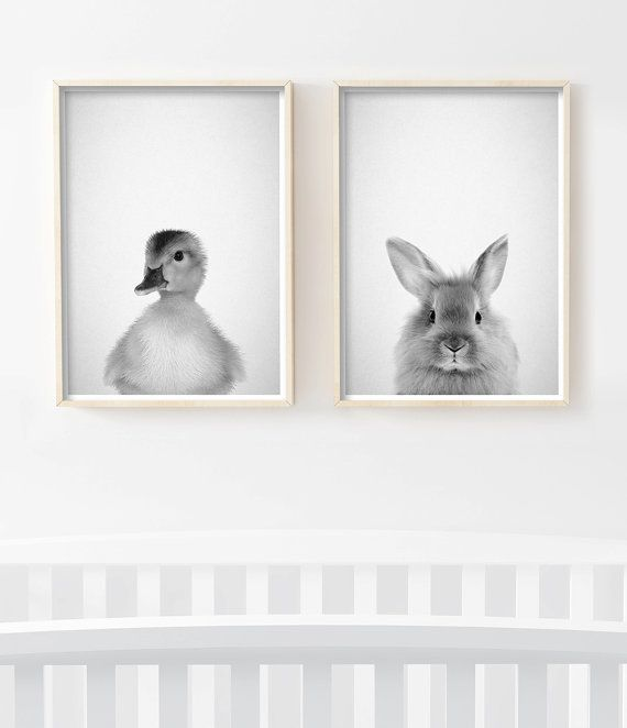 baby animal prints nursery art nursery decor forest animals bunny print by - Small Animal Pictures To Print