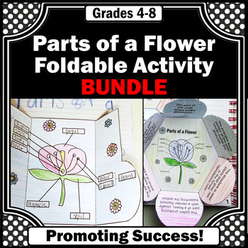 Parts of a Flower BUNDLE Flower Parts and Functions for