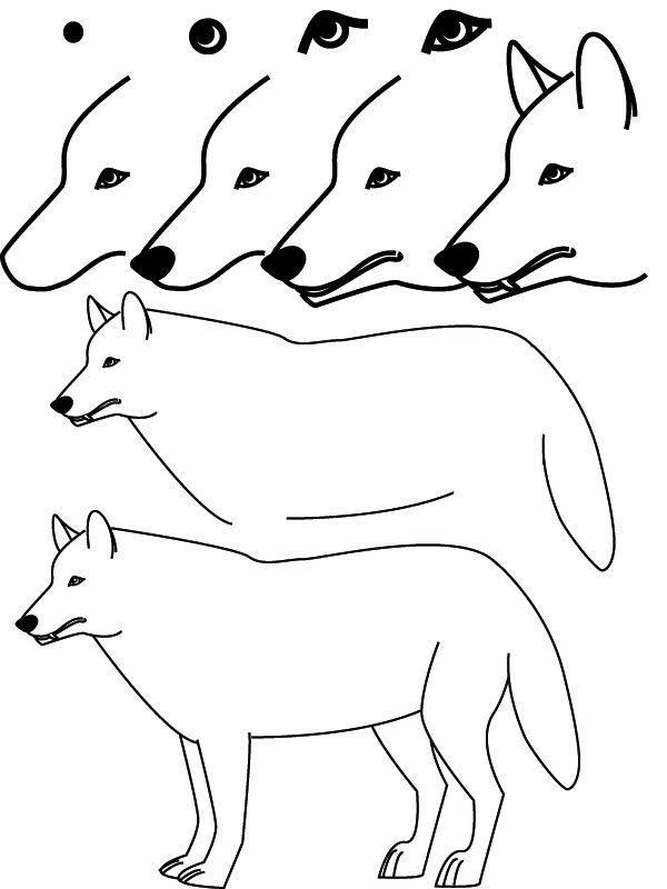 Dessin loup dessin ou aquarelle ou peinture pinterest - Loup a dessiner ...