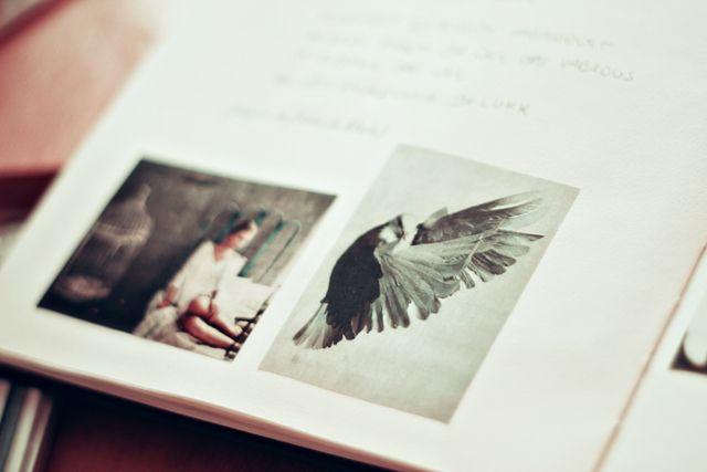 http://kertiii.blogspot.de/2012/03/apologies-like-birds-in-sky.html
