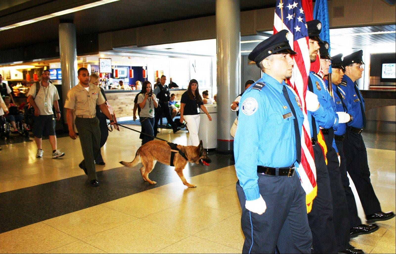 An honor guard escorts Marine Cpl. Juan Rodriguez and retired military dog  Lucca through the American Airlines concourse at O'Hare International  Airport ...