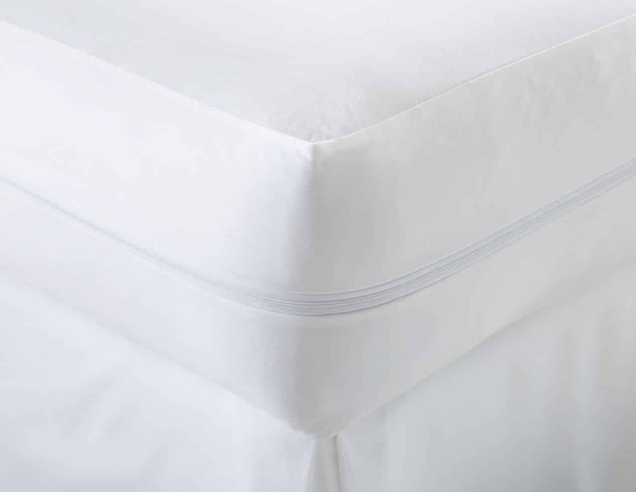 premium bugs best for waterproof beyond mattress and of covers bug cover encasement bath saferest bed