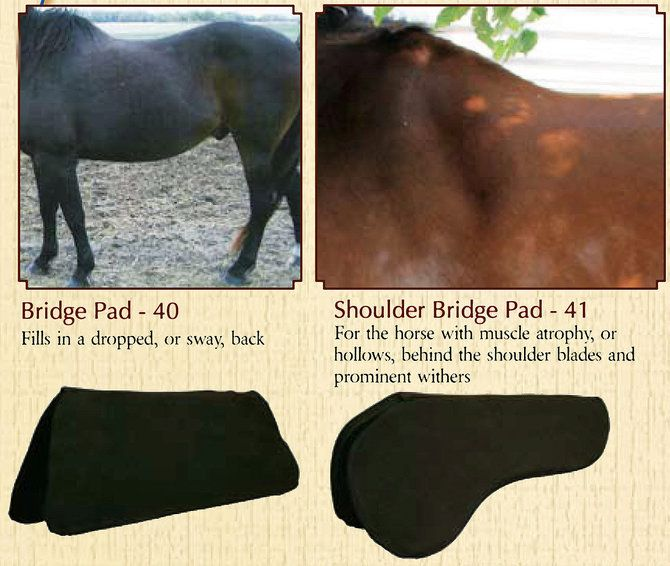 "Circle Y Memory Foam Western Long Shoulder Bridge Saddle Fit Pad 3//4/"" or 1/"""