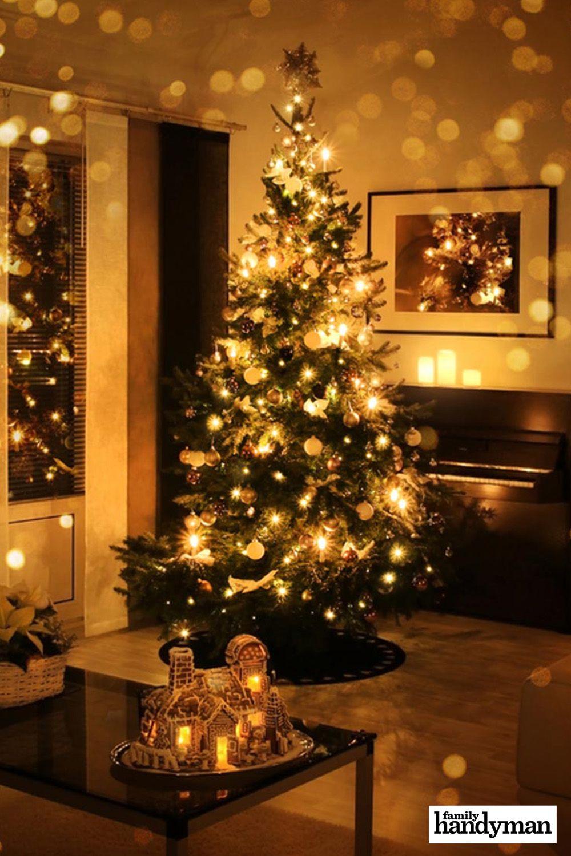 How To Keep Christmas Tree Alive Throughout The Holiday Season Christmas Decorations Christmas Decorations Apartment Christmas Apartment