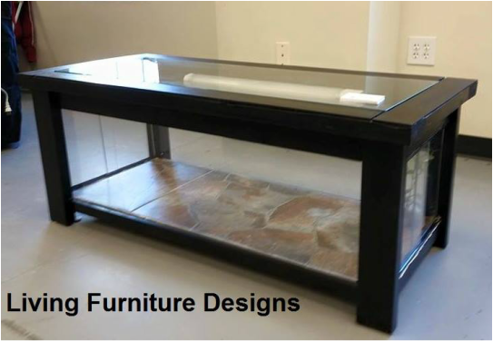 How To Build A Coffee Table To House Your Bearded Dragon Or Other Reptile Reptile Fish And
