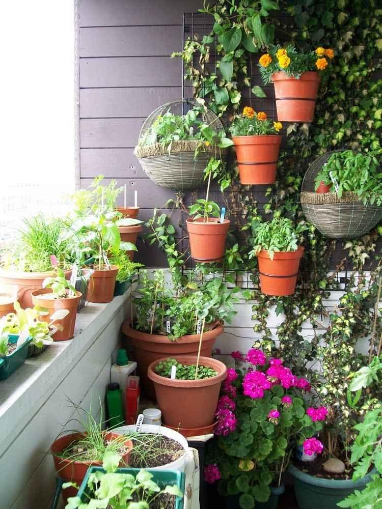 herbes aromatiques balcon en pots suspendus et parement mural en bois massif jardinage. Black Bedroom Furniture Sets. Home Design Ideas