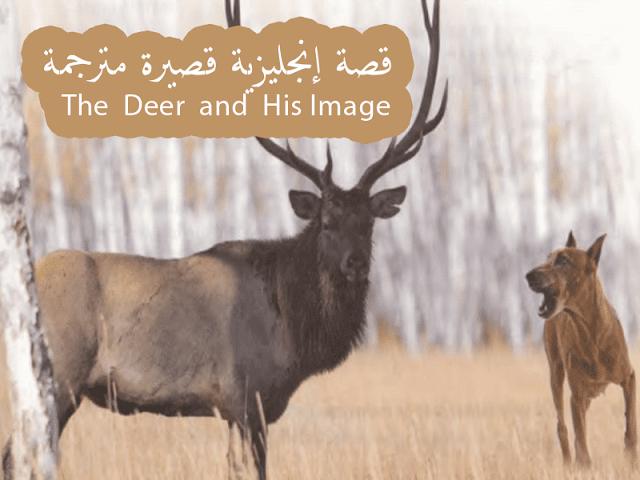 قصة إنجليزية مترجمة قصيرة وسهلة للمبتدئين The Deer And His Image Deer Image Novelty Sign