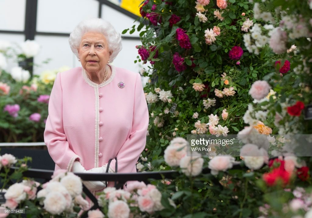 Queen Elizabeth II looks at a display of roses on the