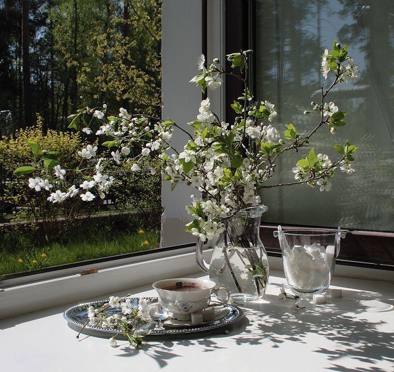 Луиза Гельтс | Белые букеты, Натюрморт, Цветы