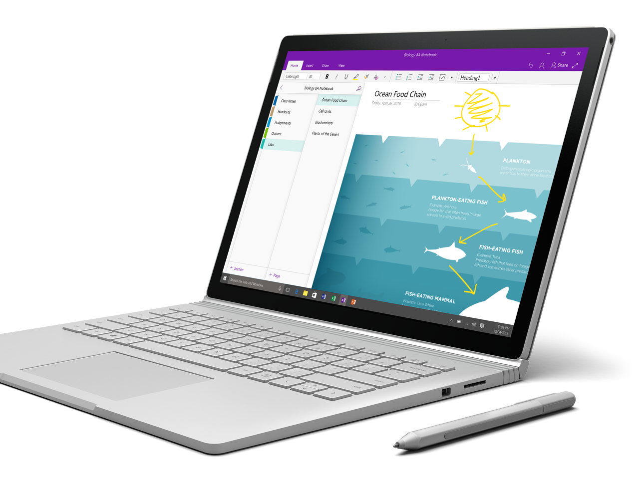 Photo De Onenote Affichee Sur Un Surface Book