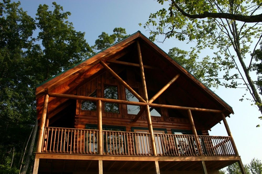 5 Steps for Choosing the Perfect Pigeon Cabin