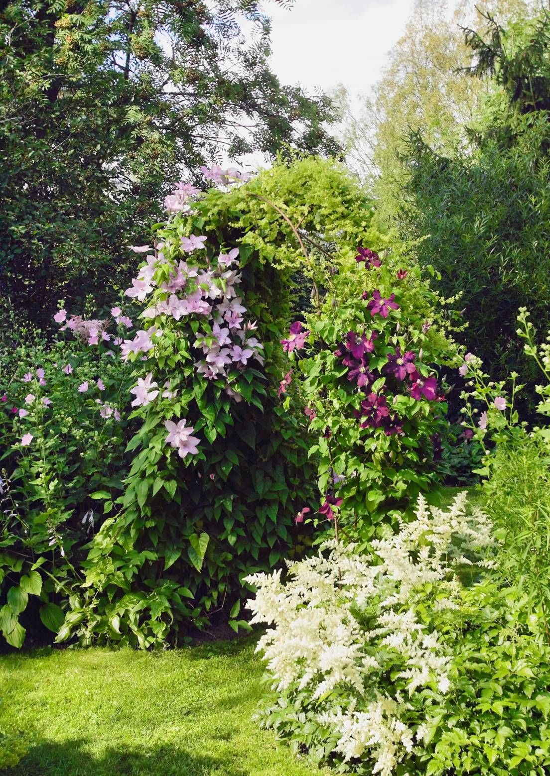 Upeinta kukkaloistoa suomalaisilta pihoilta | Meillä kotona