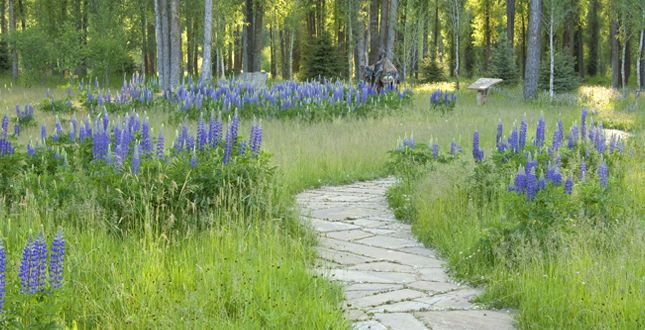 Snake River Retreat | Jackson, Wyoming Landscape Architecture By Design  Workshop