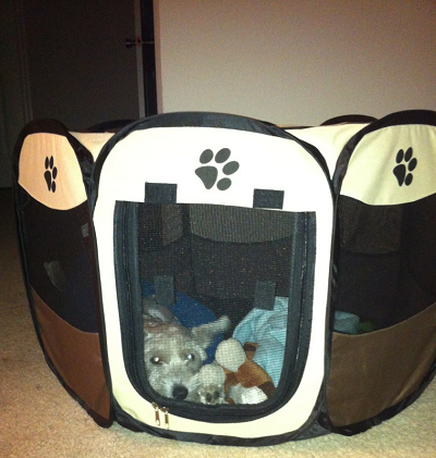 Pawsome Find: Portable Pet Playpen   http://comewagalong.com/pawsome-find-portable-pet-playpen
