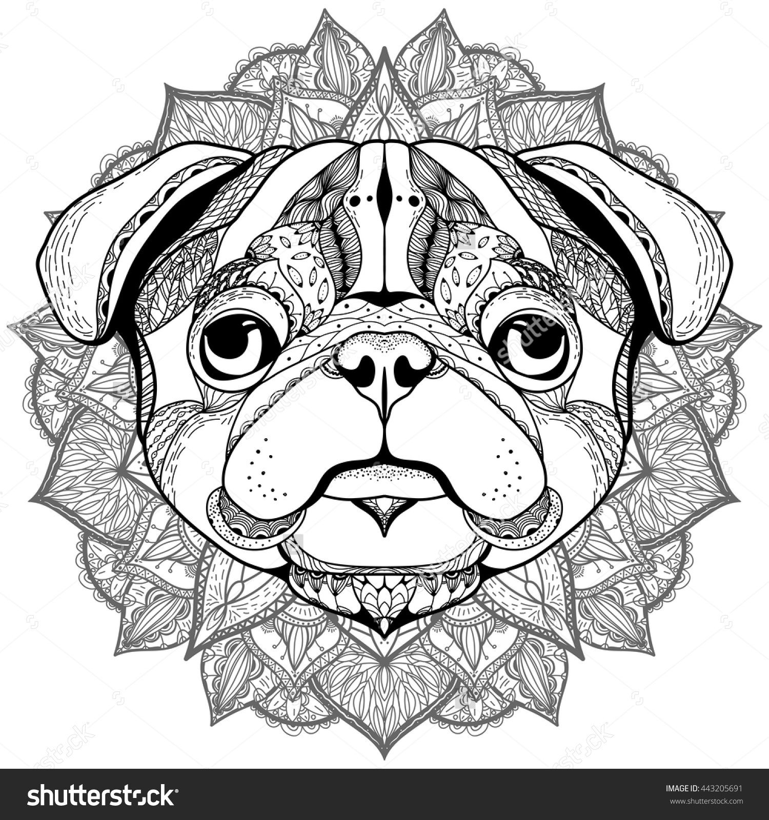 zentangle stylized cartoon of pug hand drawn sketch for