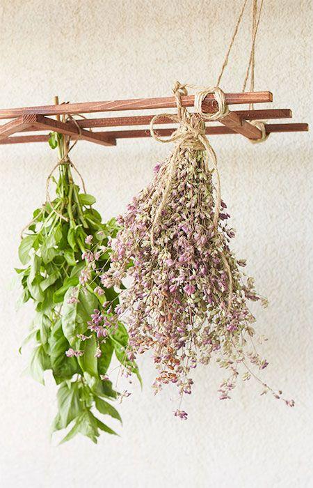 grow herbs in your garden herb drying racks hanging herbs drying herbs grow herbs in your garden herb drying