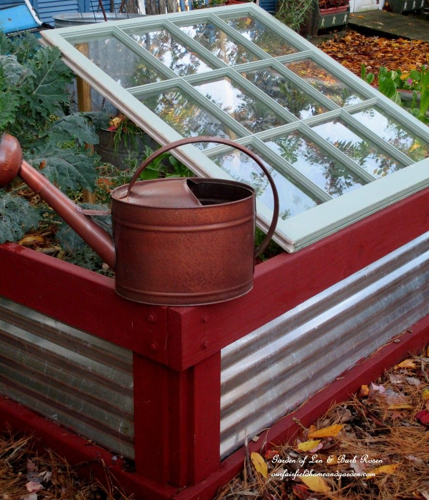 Old window over bed  old window leanto cold frame prop an old window up over greens in