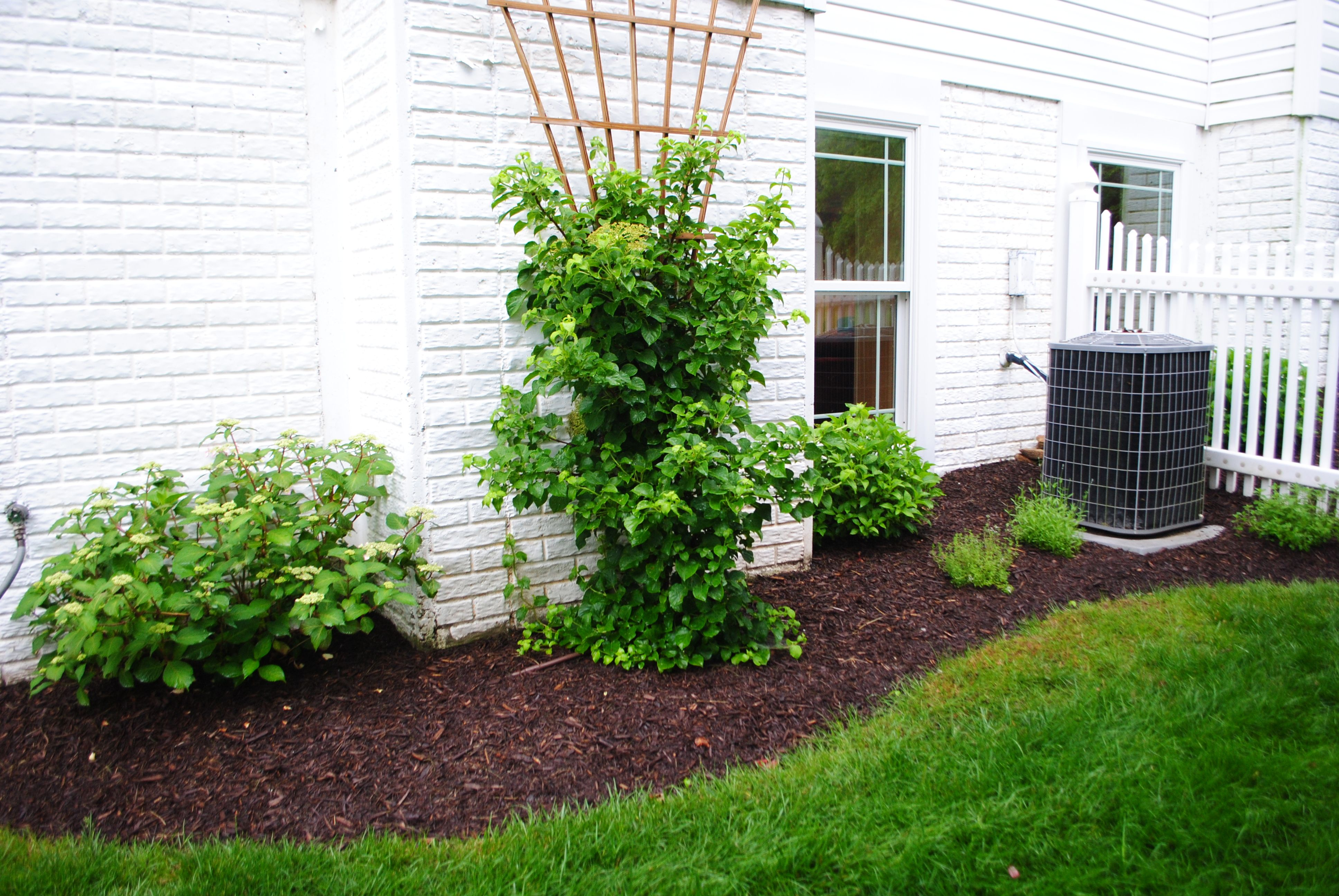 6 Air Conditioner Outdoor structures, Outdoor, Plants