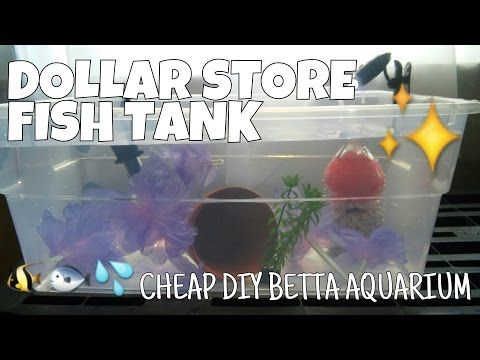 Dollar Store Fish Tank How To Make A Complete Betta Aquarium For Less Than 15 Youtube Diy Fish Tank Betta Aquarium Fish Tank