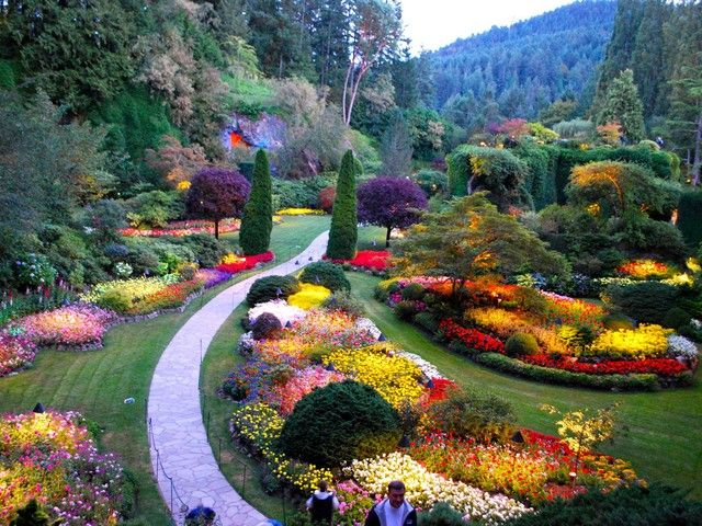25a5640f48a807a4cbb4f03968f97aaf - How To Get To Butchart Gardens From Downtown Victoria